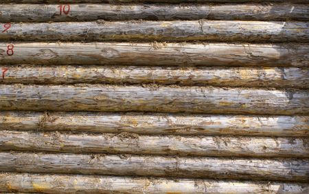 texture  wood logs wall
