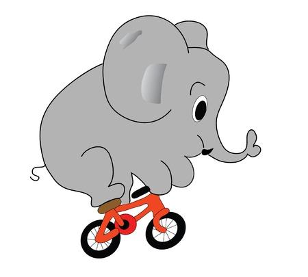 circus bike: elefante en la bicicleta  Vectores