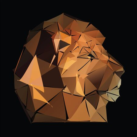 triangular lion on thr black. Vector file EPS Illustration