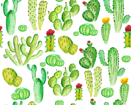 watercolor cactus seamless pattern on the white background