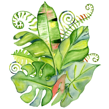 palm wreath: Watercolor tropical leaves bouquet Hand drawn plants set Exotic palm leafe, jungle tree Perfect for fabric design,  invitations, greeting cards and wallpapers Aloha collection