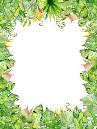 Watercolor tropical leaves frame, Hand drawn plants arrangement border Exotic palm leaf, jungle tree Perfect for fabric design,  invitations, greeting cards and wallpapers Aloha collection