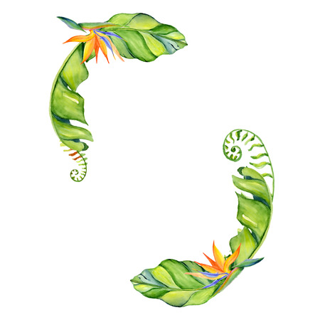 Watercolor tropical leaves wreath Hand drawn plants set Exotic palm leafe, jungle tree Perfect for fabric design,  invitations, greeting cards and wallpapers Aloha collection Stock Photo