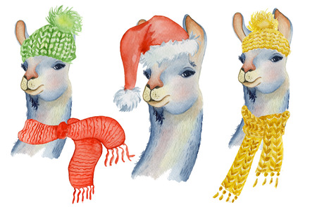 Christmas lama illustration with Santa hat and scarf Winter watercolor animals Cute kids illustration perfect for greeting or post cards, prints on t-shirts, phone cases Hand drawn baby animal alpaca