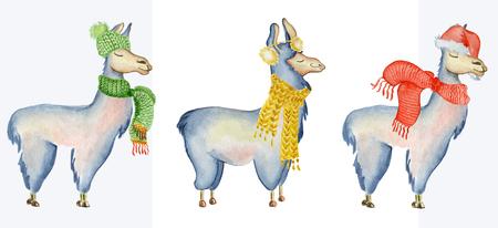 サンタの帽子とスカーフ冬水彩動物かわいい子供たちイラスト挨拶やポスト カードに最適なクリスマス ・ ラマ イラスト プリント t シャツ、携帯電