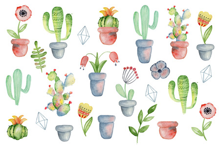 Watercolor hand drawn floral and cactus with pots set. Good for greeting cards, invitations, decoration