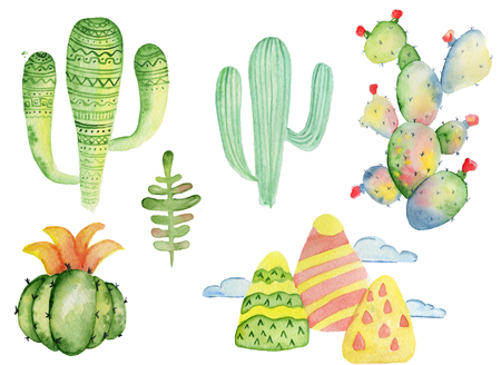 Watercolor tropical cactus hand drawn illustration set Stock Photo