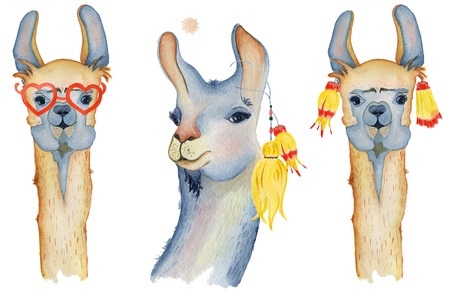 Cute Llama cartoon characters set watercolor illustration, Alpaca animals, hand drawn style.  Isolated white background. Good for greeting cards, invitations, decoration, etc.