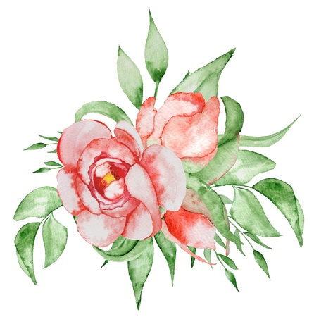 Peonies bouquet Hand painted watercolor combination of Flowers and Leaves isolated on white background