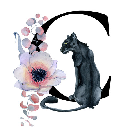 Floral watercolor alphabet. Monogram initial letter C design with hand drawn peony and anemone flower  and black panther  for wedding invitation, cards, logos