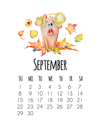 Mounthly calendar for 2019 new year with hand drawn watercolor cute pigs September
