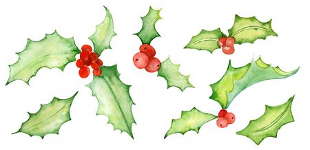 Watercolor Christmas mistletoe set Hand drawn illustration