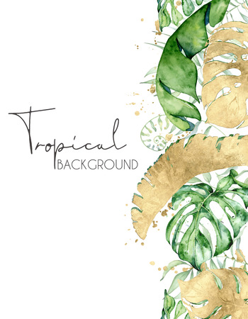 Tropical watercolor leaves banner isolated on white background. Exotic floral designs. Hand drawn illustration Фото со стока