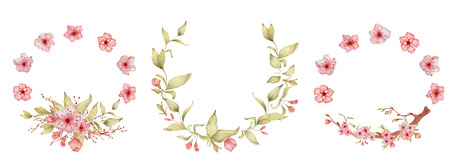 Sakura flowers watercolor illustration. Blossom petal hand drawn wreath Zdjęcie Seryjne