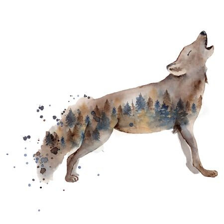 Watercolor wolf illustration wild forest animal with double exposure effect and pine trees