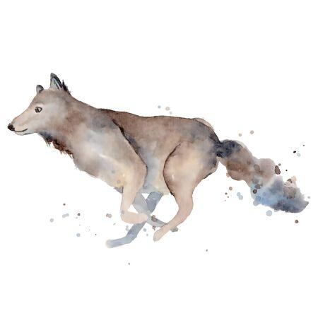 Watercolor wolf hand drawn illustration wild forest animal Foto de archivo - 134607684