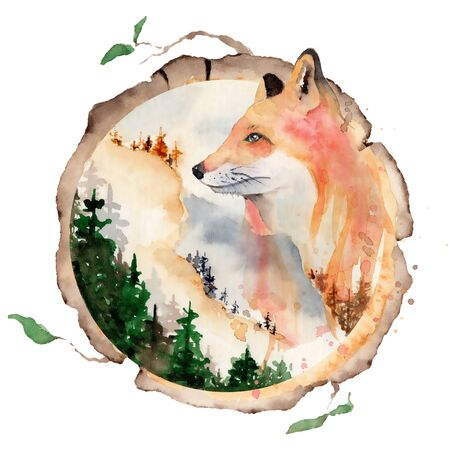 Watercolor fox  Animal illustration isolated on white background. Hand drawn Foto de archivo - 135453212