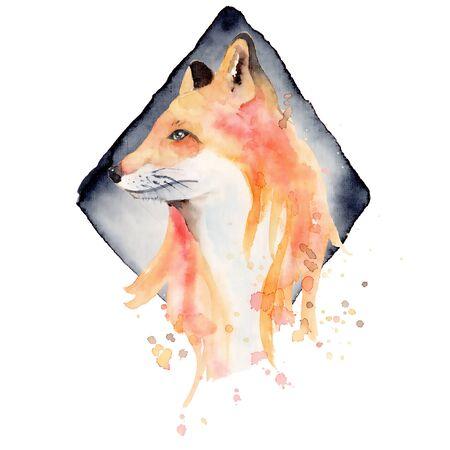 Watercolor fox  Animal illustration isolated on white background. Hand drawn Foto de archivo - 135453229