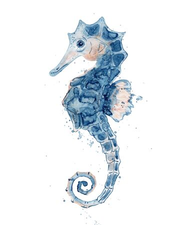 Watercolor seahorse hand drawn  illustration isolated on white background. Marine life