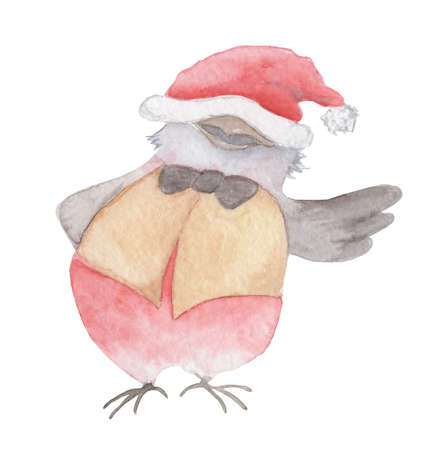Watercolor Christmas bird in a Santa Claus hat hand drawn illustration isolated on the white background 版權商用圖片