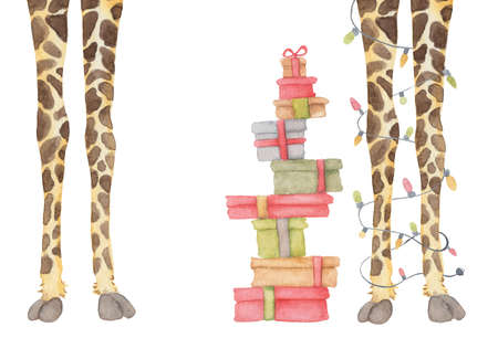 Giraffe legs with garland decoration and presents, Animal party watercolor illustration isolated on the white background 版權商用圖片