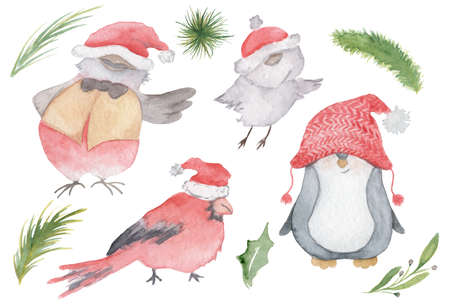 Watercolor Christmas birds set with cardinal, Sparrow, penguin in Santa hats   hand drawn illustration isolated