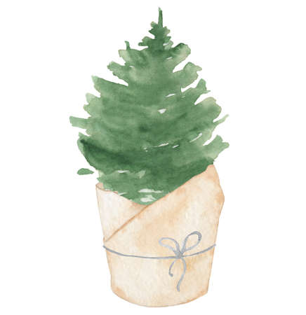 Watercolor potted Christmas tree hand drown illustration isolated on the white background 版權商用圖片