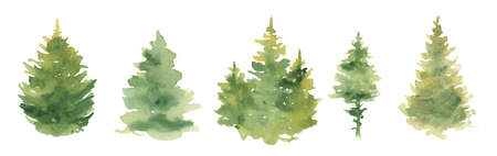 Watercolor Christmas pine tree green forest Hand drawn illustration isolated on white background Imagens