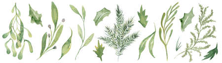 Watercolor pine brunches and leaves hand drawn christmas decor illustration 版權商用圖片 - 154865536