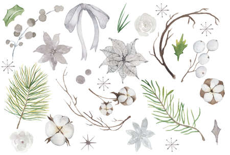 Watercolor pine brunches and leaves hand drawn christmas decor illustration