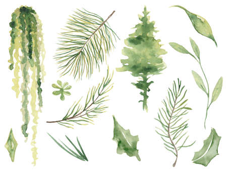 Watercolor pine brunches hand drawn christmas decor illustration Imagens