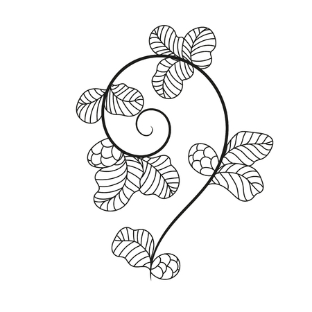 Vector elements. Curls and scrolls with floral elements for design and decoration.