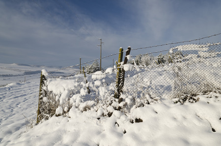 meshwork: Winter tale in the fields of northern Bulgaria