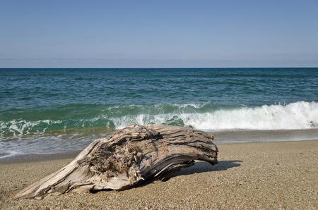 viento: Salpicaduras de las olas en la playa - paisajes costeros b�lgaros