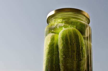 Pickled homemade sunny cucumbers in the glass jar