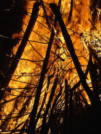 fire Stock Photo - 6965593
