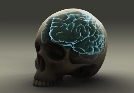 Brain Within the Skull photo