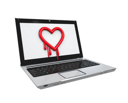 vulnerable: Heartbleed Bug in Laptop