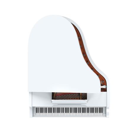 Grand Piano Isolated Stock Photo - 28118504