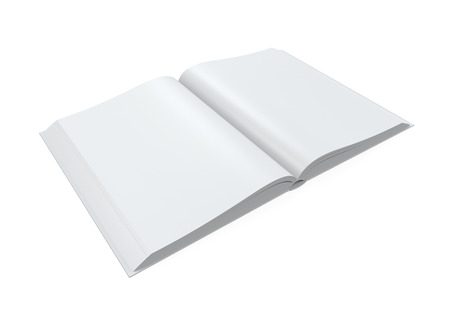 open magazine: Blank Open Magazine
