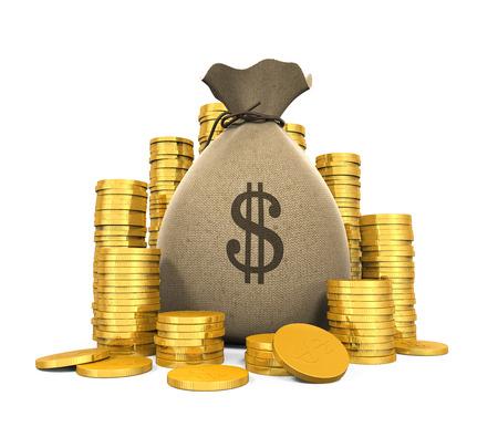 Money Coins in Bag