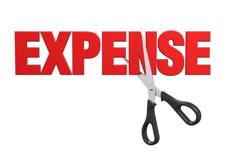 Expense Cuts Concept