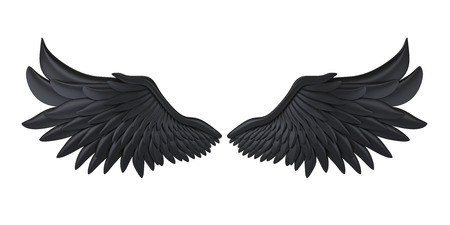 Black Demon Wings Isolated