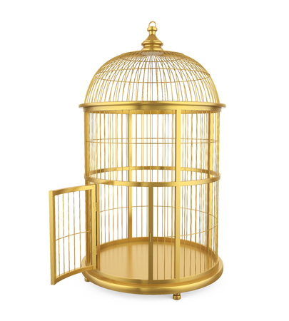 Birdcage Isolated