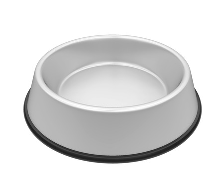 Metal Pet Bowl Isolated