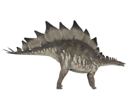 Stegosaurus Dinosaur Isolated Stockfoto
