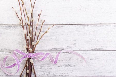 lila: Pussy willow branch with lila ribbon on a wooden background, top view