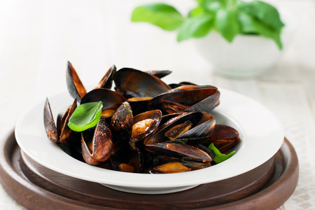 Homemade cooked mussels with garlic, tomato sauce, italian herbs, white wine and fresh basil in a plate, closeup Stockfoto