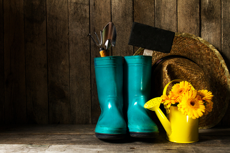 Gardening tools with blue rubber boots, yellow spring flowers on a wooden background. Spring, summer, vacation or gardening concept. Stockfoto