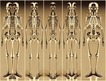 Five Gold Alien Skeleton photo